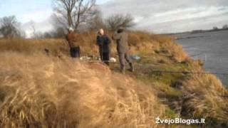 Vėgėlių žvejyba Nemune 2011 12 10 Ž...