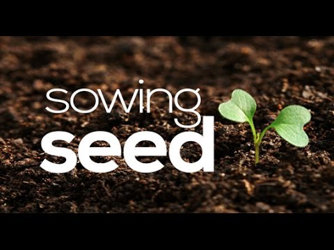 Sowing Seed Part 3 The Power Of The Seed Youtube