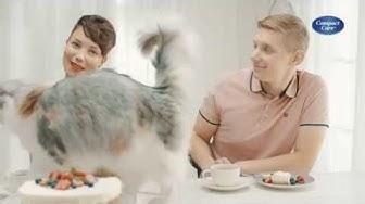 Compact Care -kissanhiekka on tarkkavainuisen valinta.