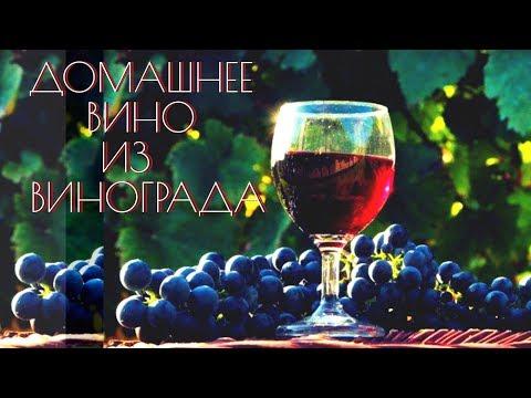 Домашнее вино.Как сделать вино из винограда.Простой РЕЦЕПТ домашнего вина Изабелла