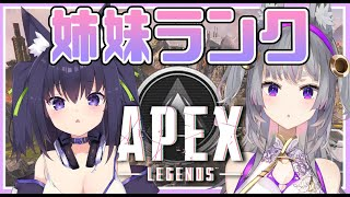 【APEX】エムねぇとランクへ!!【Vtuber/久遠たま】