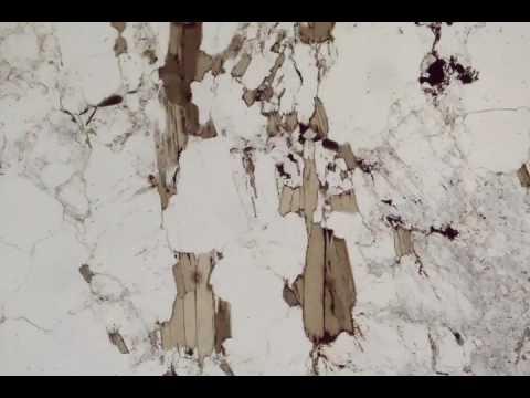 Biotite, Plane Polars