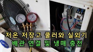 저온 저장고(창고) 쿨러와 실외기 배관 연결 및 냉매 …