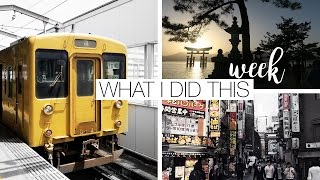 Tiny Home Tour & I lost $500 - Japan Travel Diary
