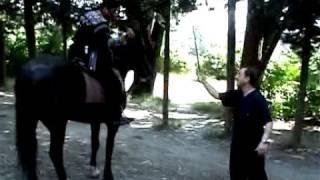 იპოდრომზე ცხენებზე ჯირითი