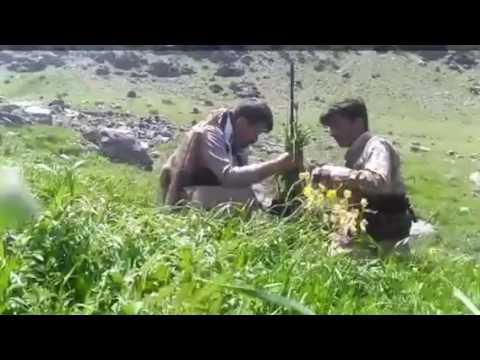 PDKI Peshmerga in the Zagros Mountains