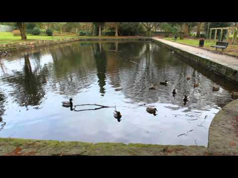 Witton Country Park, Blackburn - Canon EOS60D