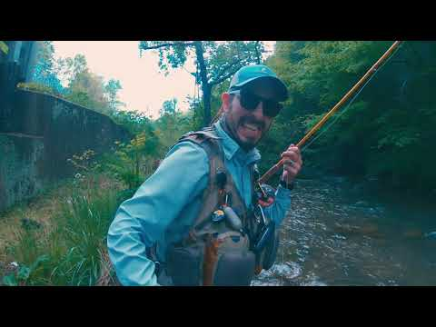 Fly Fishing Small Streams Of Western NC.  May 2019