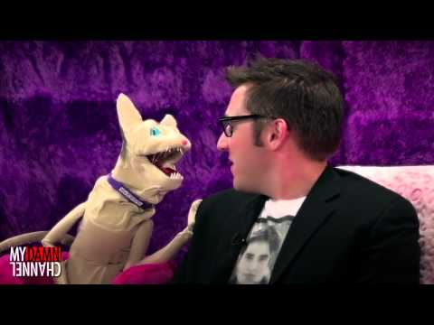 The Love Me Cat   Top 3 with Sam Greenspan