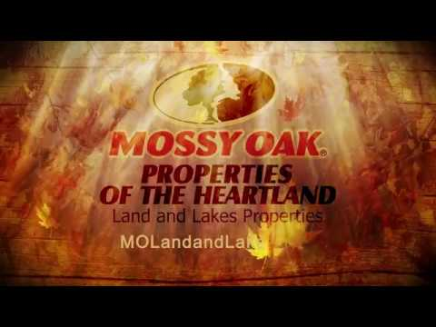763 Acre Hunting Ranch For Sale, Licking MO - Mossy Oak Properties