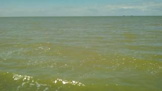 Ейск каменка море 2016(Оо., 2016-06-08T12:09:51.000Z)