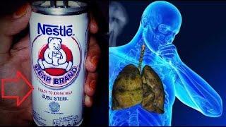 Fakta Mengejutkan Apakah Anda Sering Minum Susu Bear Brand Ini Klo Iya Berarti Anda Wajib Nonton Youtube