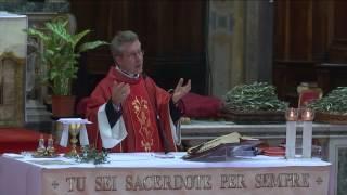 Omelia di 9 Aprile 2017  DOMENICA DELLE PALME (ANNO A) - Santa Messa ore 18:30