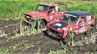 """Нива на """"BFGoodrich"""" против УАЗа на """"Сафари 500"""" по болоту."""