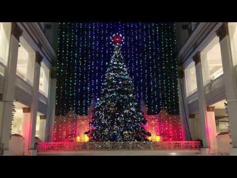 Macy's Christmas Light Show and holiday display in Philadelphia - Macy's Christmas Light Show And Holiday Display In Philadelphia