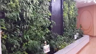 벽천분수와 실내 수직정원 2012년 시공, indoor…