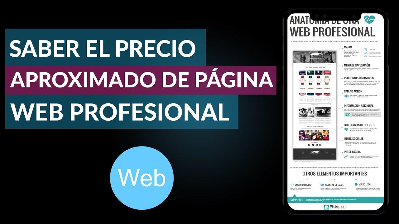 Cómo Saber el Precio o Costo Aproximado de una Página Web Profesional
