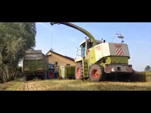 Claas Jaguar 840 + Bodini|Valtra 8050 + Pavelli| Fendt 515c + Vaia|Ensilage|Insilato|