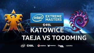 Taeja vs Toodming [TvZ] IEM Katowice 2020 Qualifiers - Starcraft 2