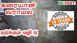 Termite Treatment Full Details For Your New Building - Tamil (How to Control Termite)