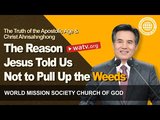 The Truth of the Apostolic Age & Christ Ahnsahnghong | WMSCOG, World Mission Society Church of God