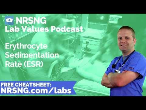 Erythrocyte Sedimentation Rate ESR Nursing Considerations, Normal Range, Nursing Care