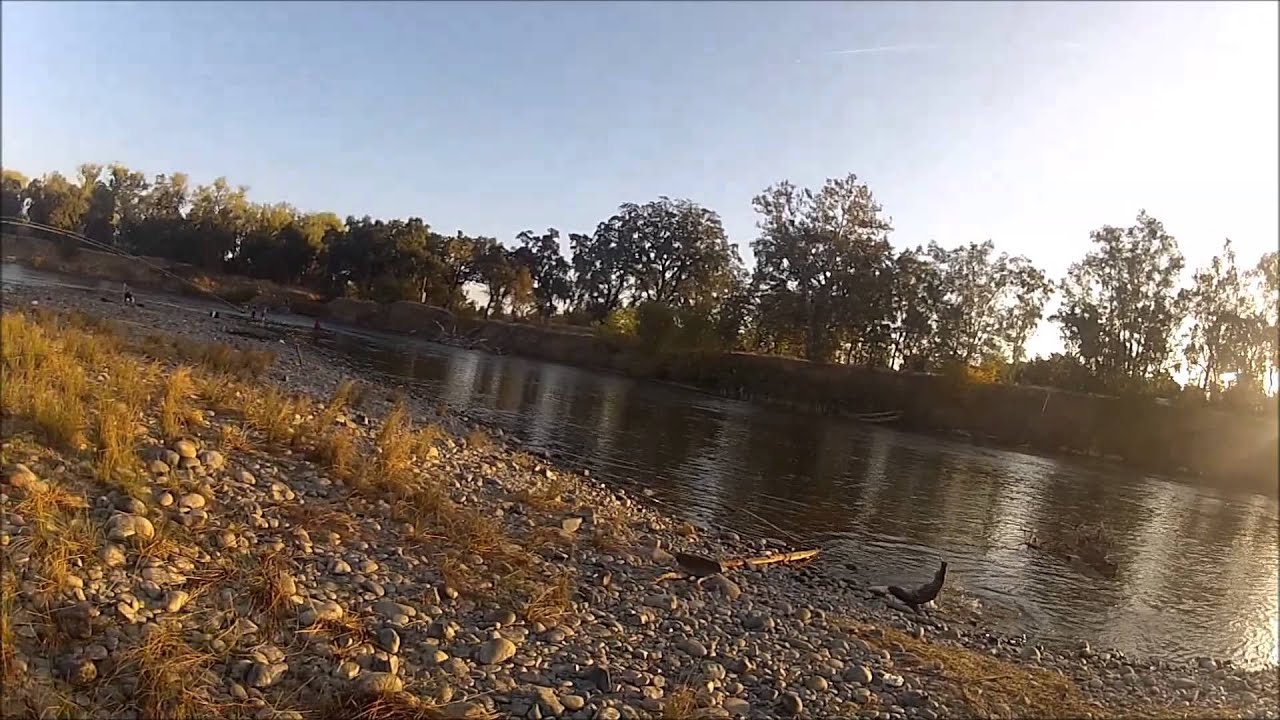Salmon fishing feather river youtube for Feather river salmon fishing