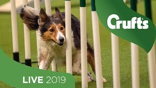Crufts 2019 Day 1  Part 1 LIVE
