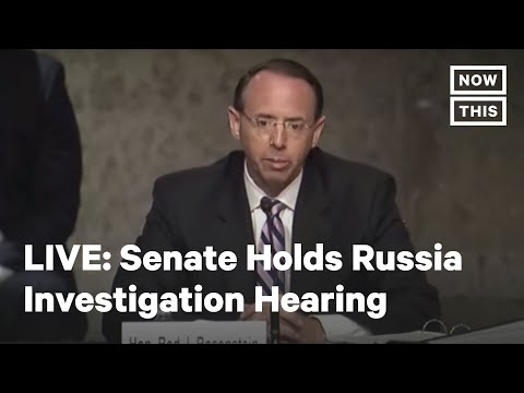 Sen. Judiciary Committee Holds Hearing on Russia Investigation Amid Protests | LIVE | NowThis