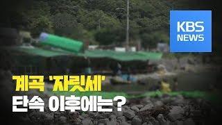 [뉴스 따라잡기] 물 좋은 계곡 '자릿세'…단속 이후에는? / KBS뉴스(News)