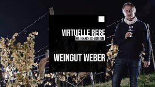 VR-REBE WEIHNACHTS-EDITION: WEINGUT KARL WEBER
