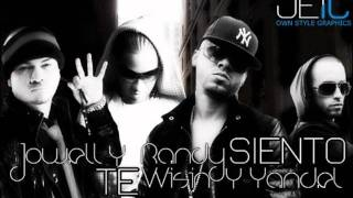 Wisin & Yande Ft Jowell & Randy  & Jenny La Sexy Voz - Perreame (Remix).