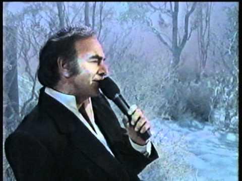 Neil Diamond You Make It Feel Like Christmas