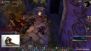 Dire Maul Tribute Solo Hunter - 7:17 - Shaman Cho