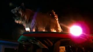 Kid Cudi -- (OST Проект Х: Дорвались) Pursuit Of Happiness (Steve Aoki Dance Remix)
