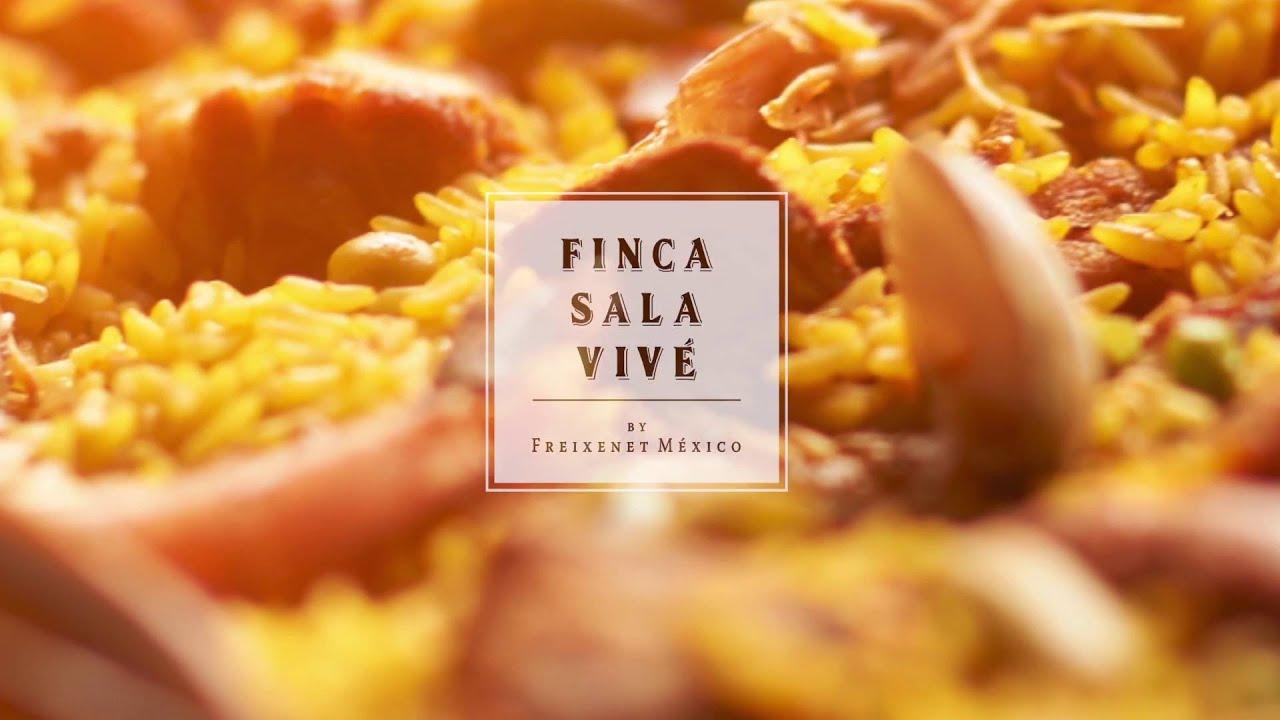Resultado de imagen para festival de la paella freixenet