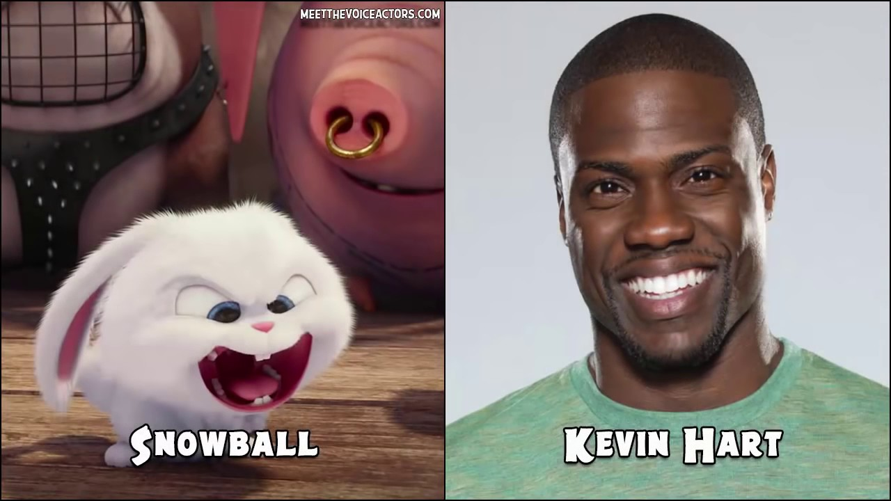 Characters Voice Actors Of The Secret Life Of Pets Youtube