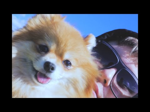 Youtube: Leo Roi – Ce Matin