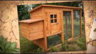 Building A Chicken Coop Review