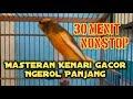 Masteran Kenari Gacor Ngerol Panjang 30 Menit Nonstop  Tembakan(.mp3 .mp4) Mp3 - Mp4 Download