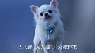歌:yu-wen chiang 訳:慧嫺張.