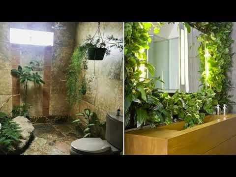 plantas-de-interior-para-cuarto-de-baño