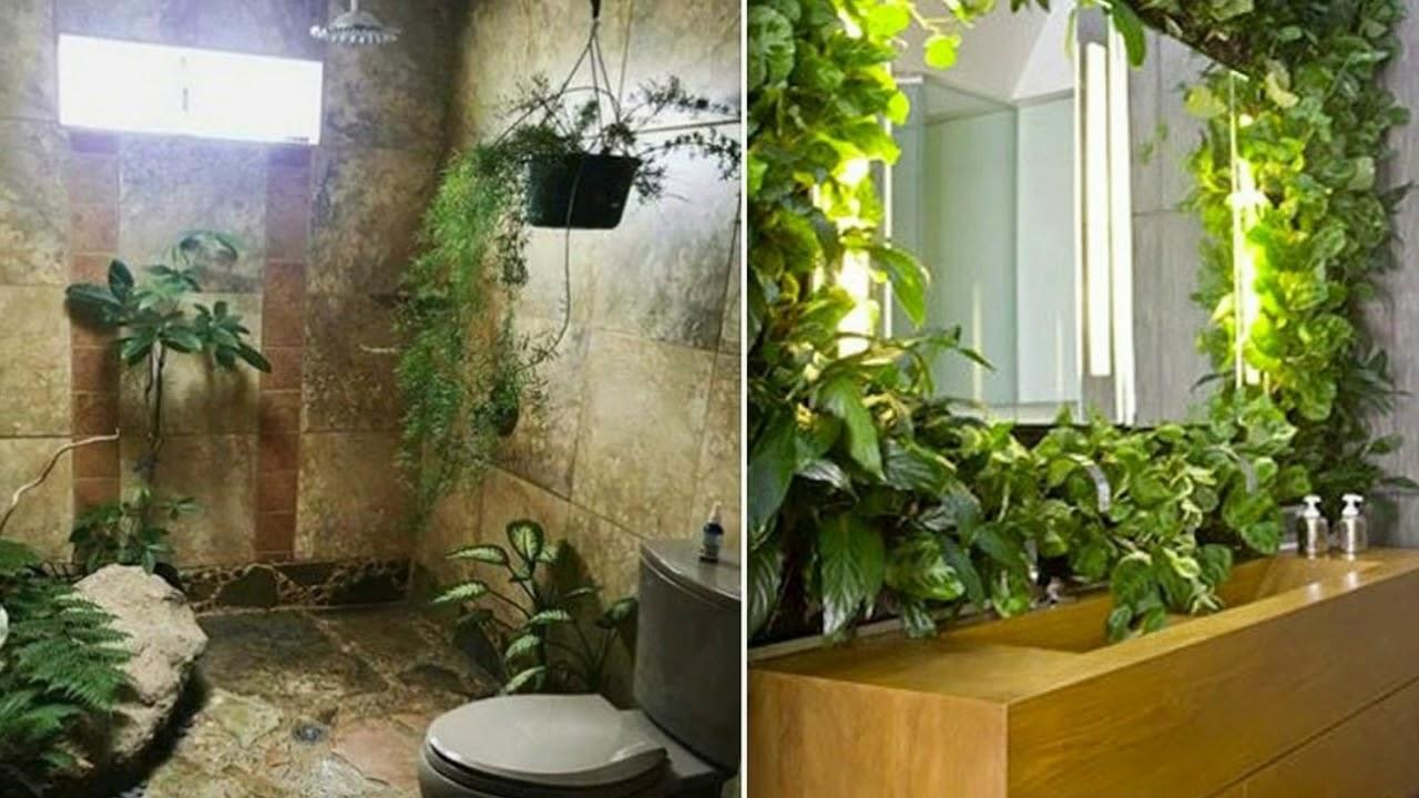 Plantas De Interior Para Cuarto De Baño - YouTube