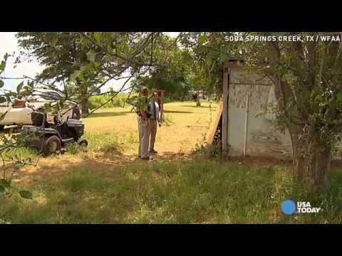 Bee swarm kills man mowing neighbor's grass