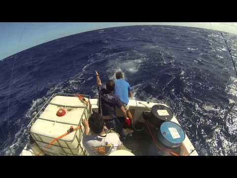 The Delivery, Australia to Fiji by boat
