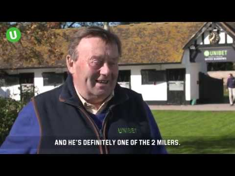 Nicky Henderson Stable Tour 2018/19: Novice Chasers