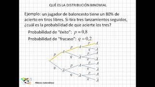 01 Qué es la distribución binomial
