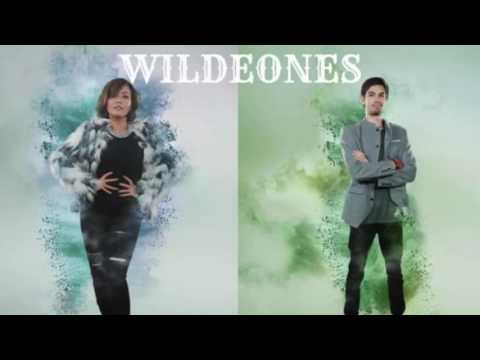 WILDEONES - Lagu Daerah Sumatera Utara (Audio) - The Remix NET