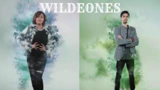 WILDEONES - Lagu Daerah Sumatera Utara (Audio) - The Remix NET