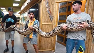 We held the world's biggest snake!